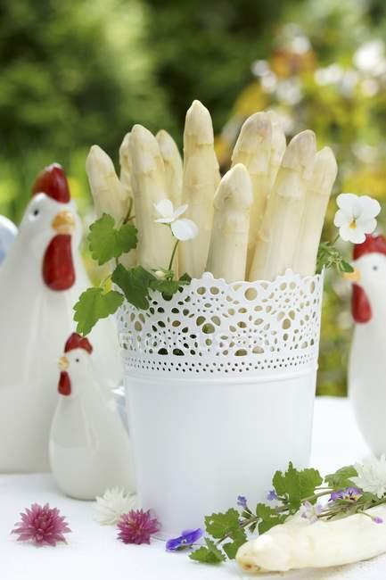 Espárragos blancos en maceta - foto de stock