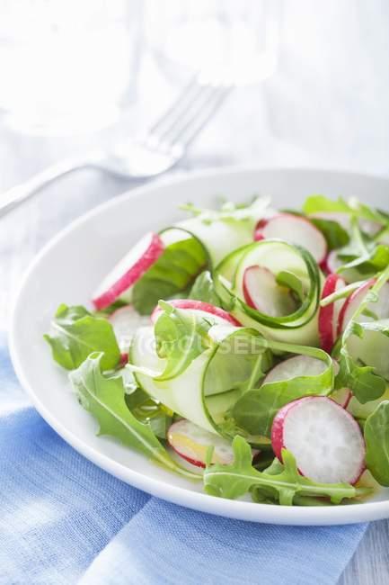 Огуречный салат с редиской и ракетой на белой тарелке поверх полотенца — стоковое фото