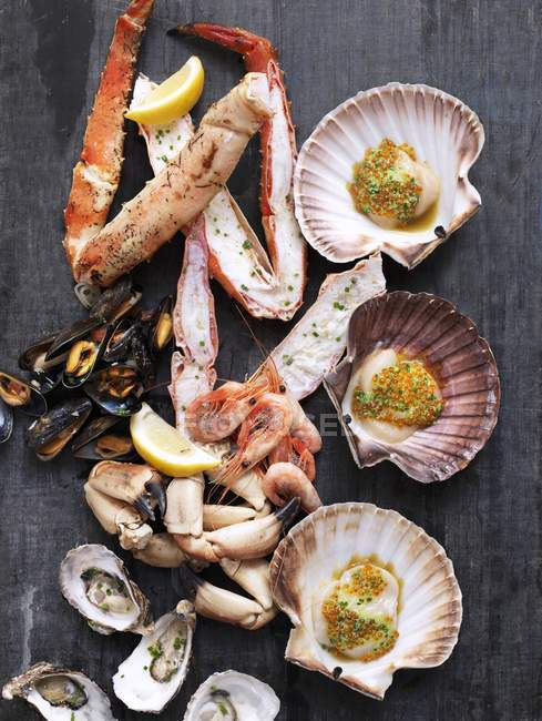 Arrangement of mussels and lobster — Stock Photo