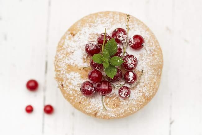 Мини-пирожное с красная смородина — стоковое фото