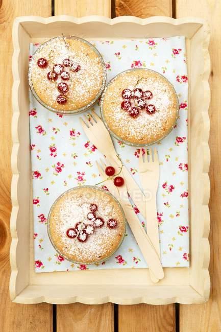 Mini tortas con grosella y azúcar glas - foto de stock