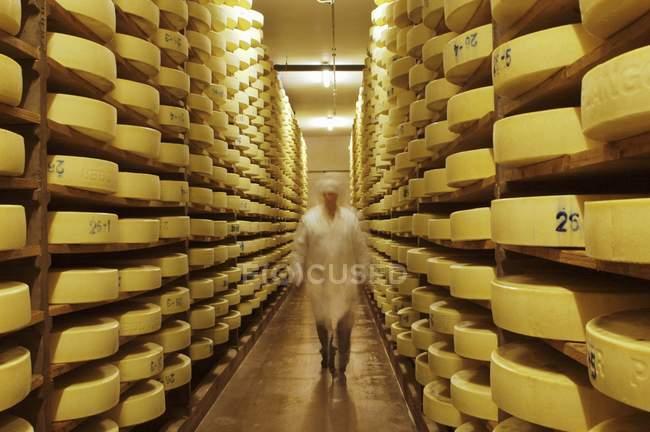 Fromage alpin en stock — Photo de stock
