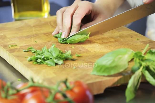 Человеческая рука рубит базилик — стоковое фото