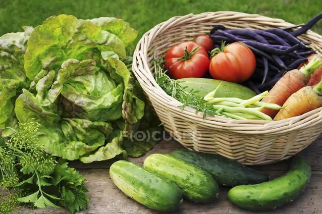 Summer garden harvest — Stock Photo