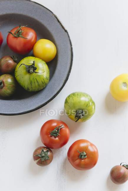 Ripe colorful tomatoes — Stock Photo