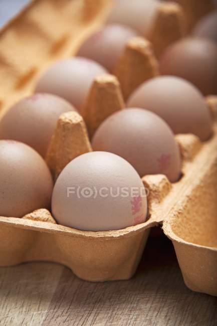 Oeufs bruns avec timbres — Photo de stock