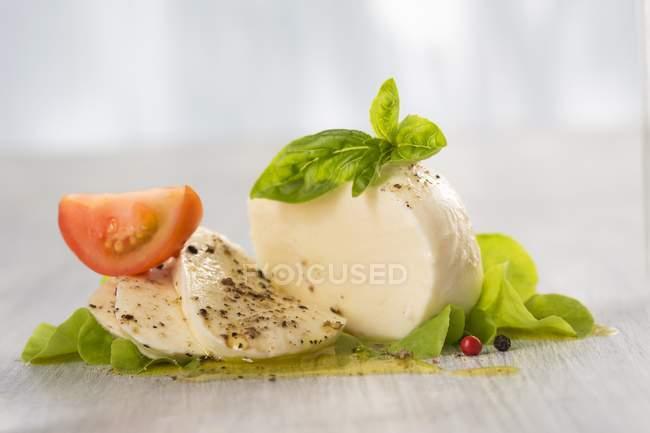 Mozzarella avec basilic et tomates — Photo de stock