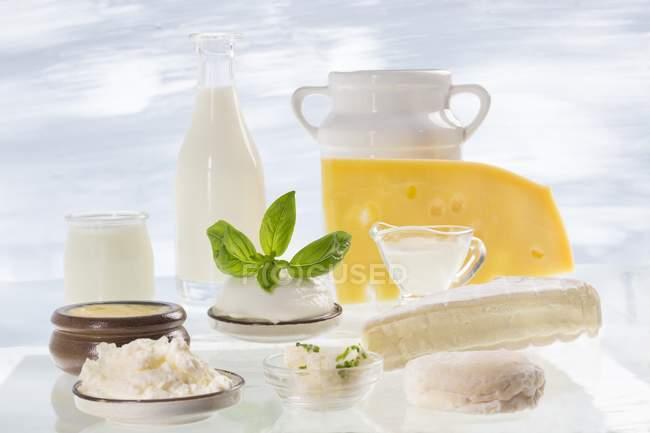 Diferentes productos lácteos - foto de stock