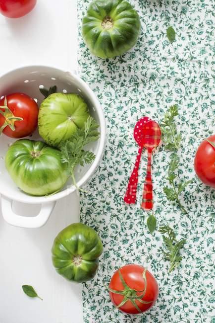 Rote und grüne Tomaten — Stockfoto