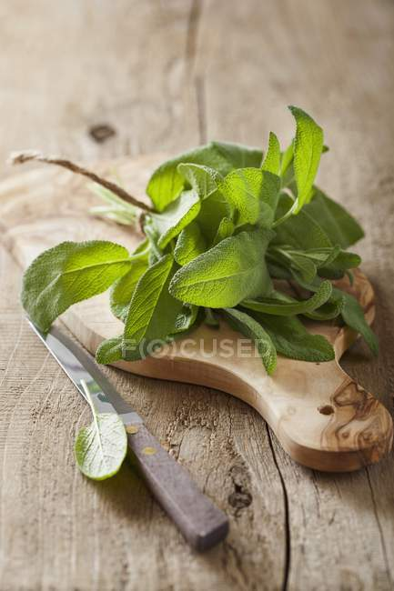 Fresh sage on a chopping board — Stock Photo