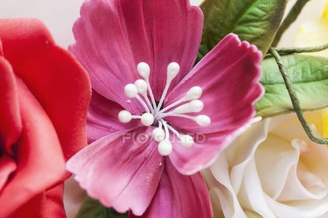 Крупным планом вид сахара в красочных цветов — стоковое фото