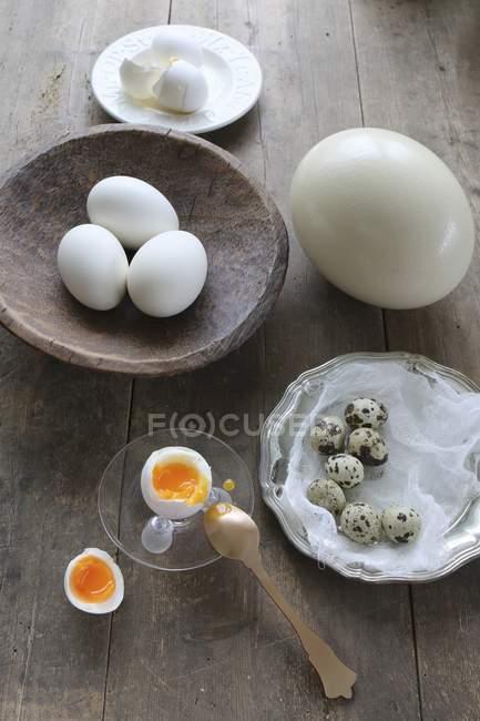 В Кубок яйцо всмятку яиц — стоковое фото