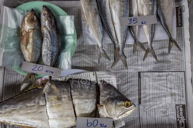 Pescado salado en el mercado - foto de stock