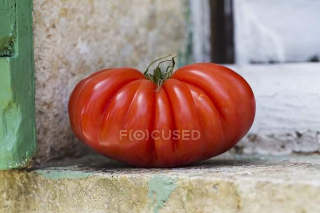 Tomate filete grande - foto de stock