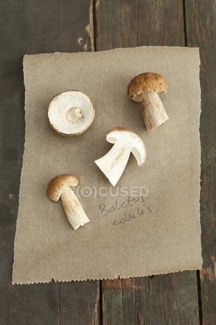 Porcini mushrooms on a piece of paper — Stock Photo