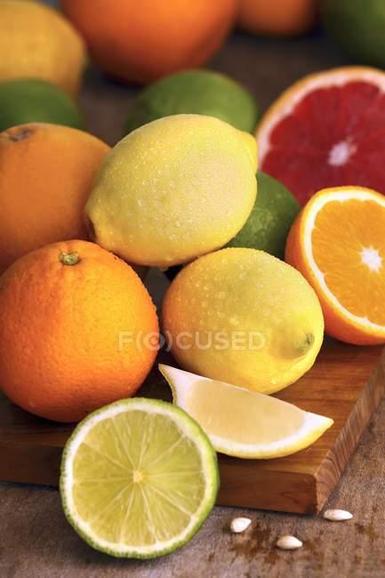 Sélection d'agrumes — Photo de stock