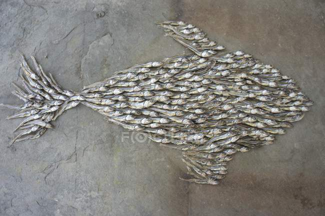 Top view of a fish shape of dried fish — Stock Photo