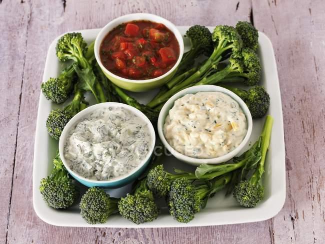 Varias salsas en cuencos - foto de stock