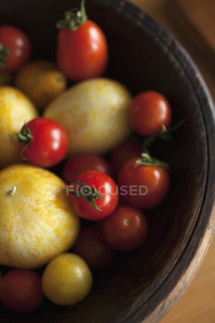 Красные и желтые помидоры — стоковое фото