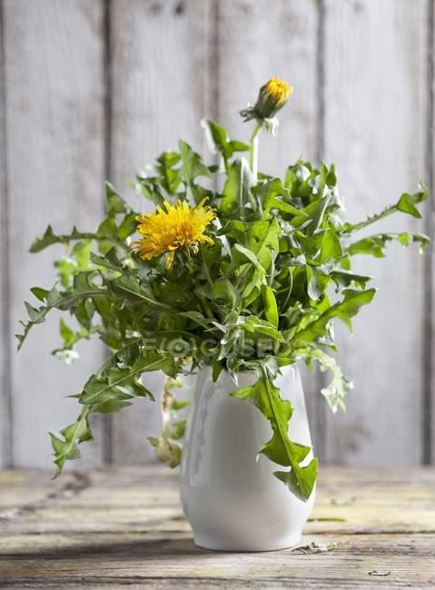 Pissenlits dans un vase blanc sur une surface en bois — Photo de stock