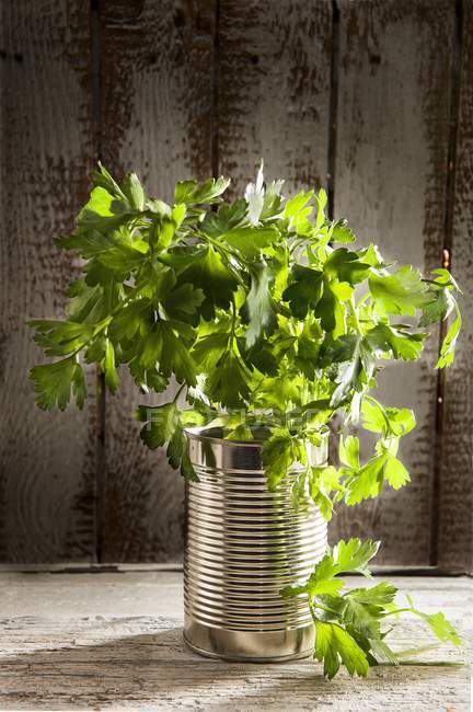 Fresh parsley in tin can — Stock Photo