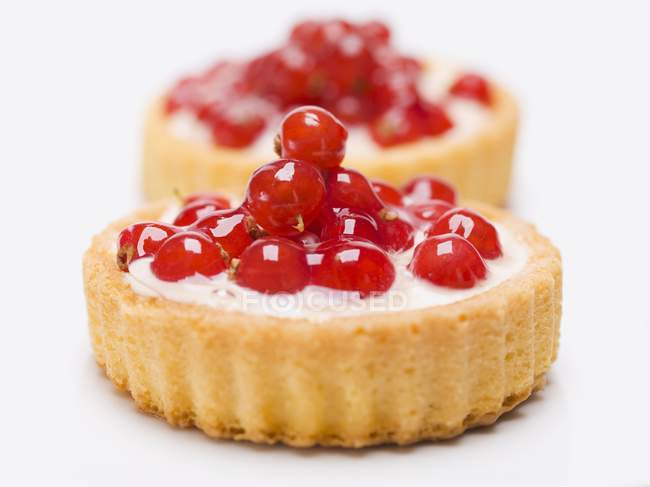 Redcurrant flans with custard filling — Stock Photo