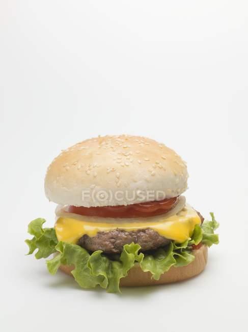 Hamburguesa con queso con salsa de tomate y tomate - foto de stock