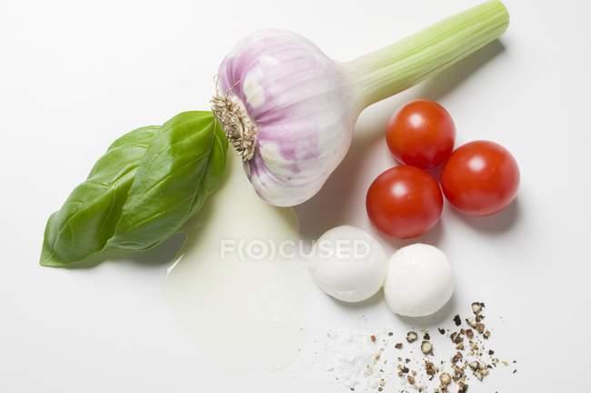 Alho com tomate e manjericão — Fotografia de Stock