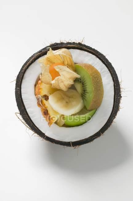 Крупным планом вид сверху из свежих экзотических фруктов в половине из кокоса — стоковое фото