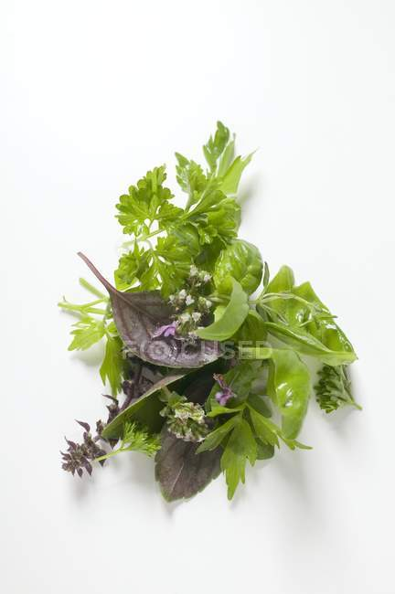 Top view of various fresh herbs in a heap on a white surface — Stock Photo