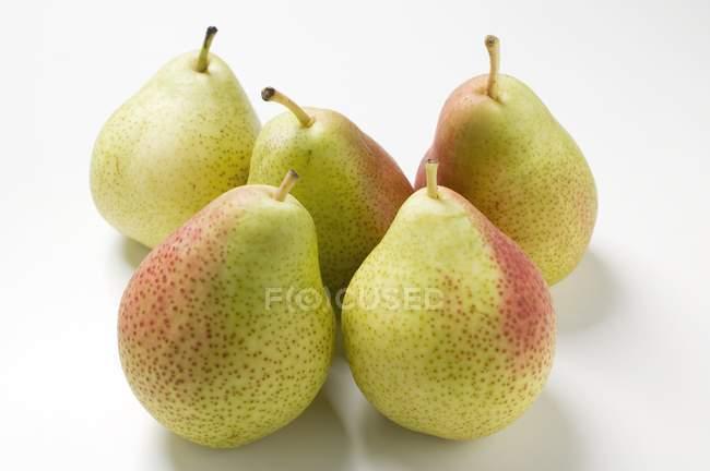 Peras maduras frescas de Forelle — Fotografia de Stock