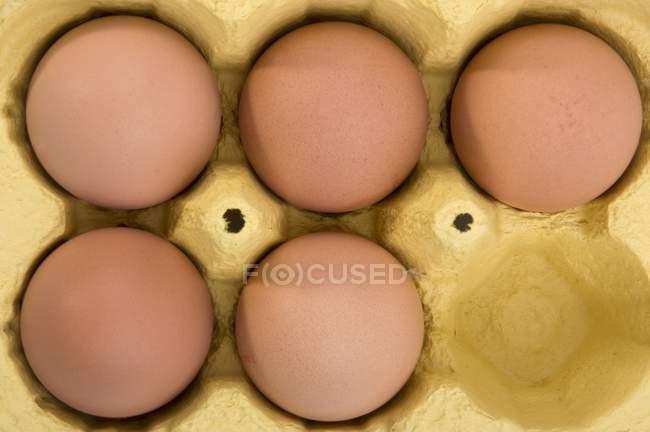 Сырые яйца коричневые в коробке — стоковое фото