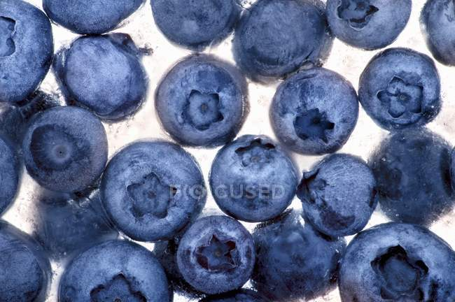 Frozen blueberries in ice cube — Stock Photo
