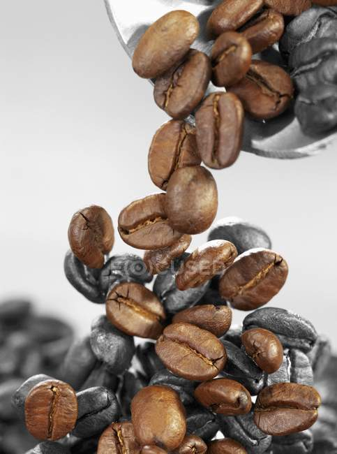 Coffee beans falling from scoop — Stock Photo