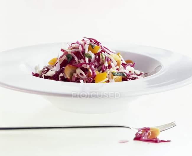 Um prato de salada de repolho vermelho e branco sobre a superfície branca — Fotografia de Stock