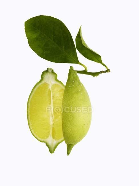 Halbierte Zitrone mit Blättern — Stockfoto