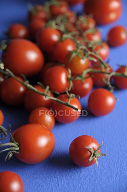 Свіжі дозрілі помідори — стокове фото