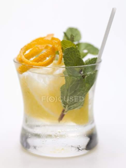 Vodka con limone, menta e scorza d'arancia — Foto stock