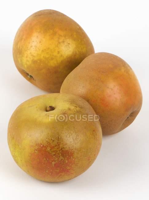 Fresh Russet apples — Stock Photo