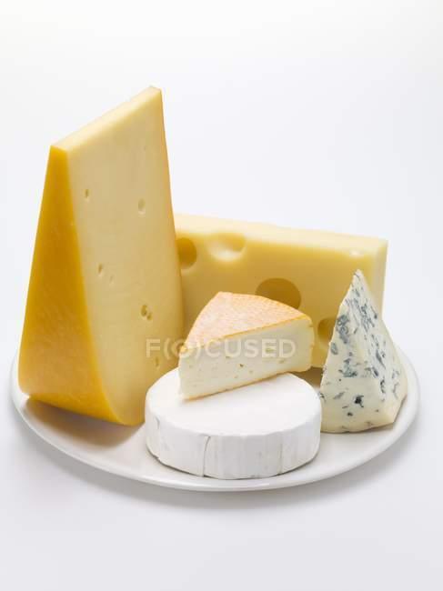 Кусочки различных сыров — стоковое фото