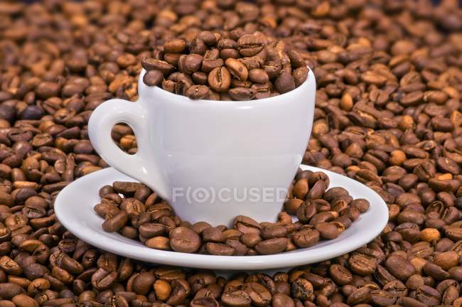 Coffee beans in espresso cup — Stock Photo
