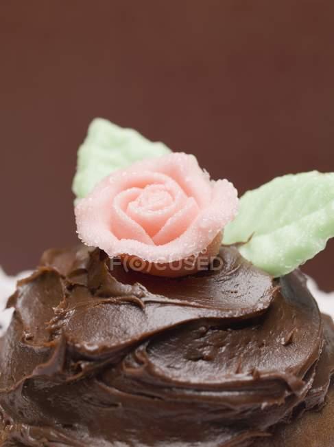 Tarta de chocolate con rosa - foto de stock