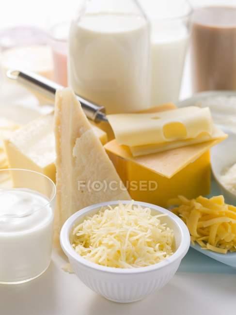 Queijos e produtos lácteos — Fotografia de Stock
