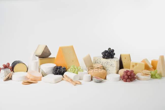 Cheese still life — Stock Photo