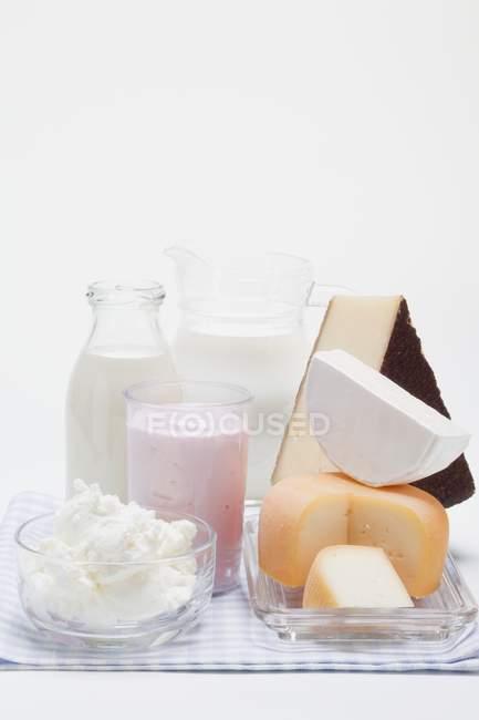 Vários queijos e laticínios — Fotografia de Stock