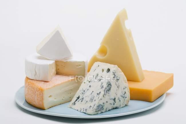 Plato de quesos con queso - foto de stock