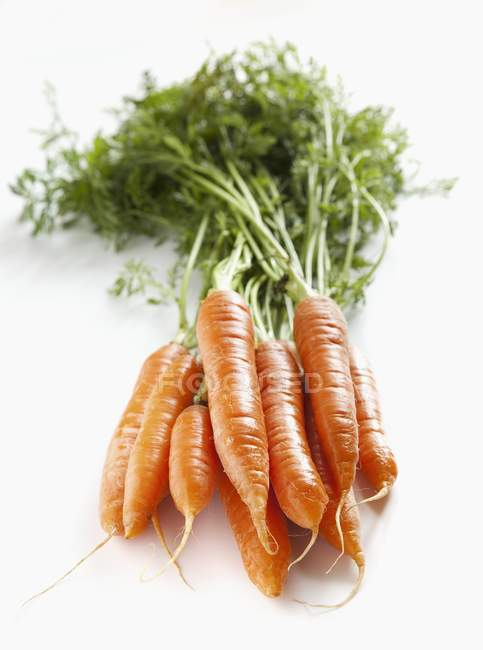 Bunch of fresh carrots with tops — healthy eating, selective focus