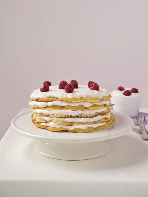 Bolo de camada de waffle — Fotografia de Stock