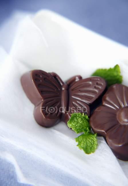 Метелик Шоколадки на квітка — стокове фото