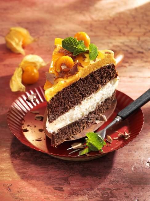 Sea buckthorn and physalis layer cake — Stock Photo